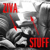 Ziva, the Boston Terrier - Sleeping with stuff piled on top of her