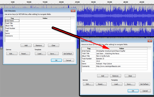 Filling out metadata in Audacity
